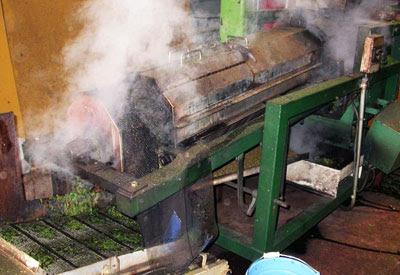 propiedades del té verde chino