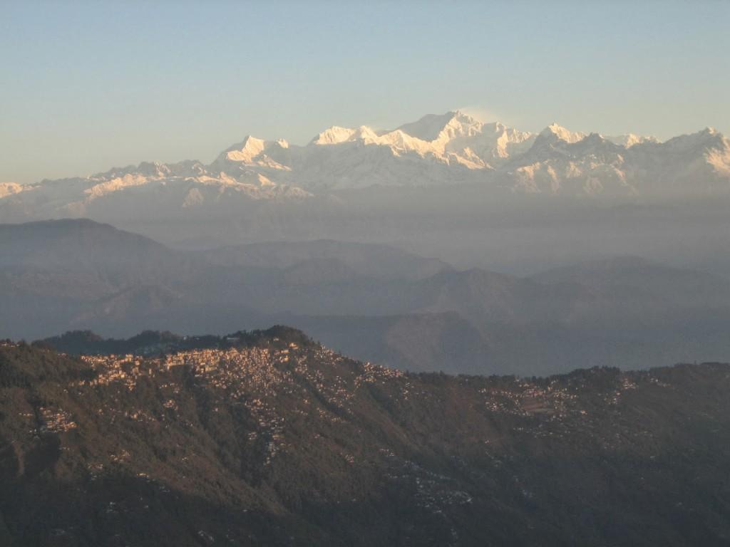 montañas de darjeeling moscatel