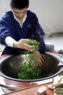 propiedades del té verde japonés